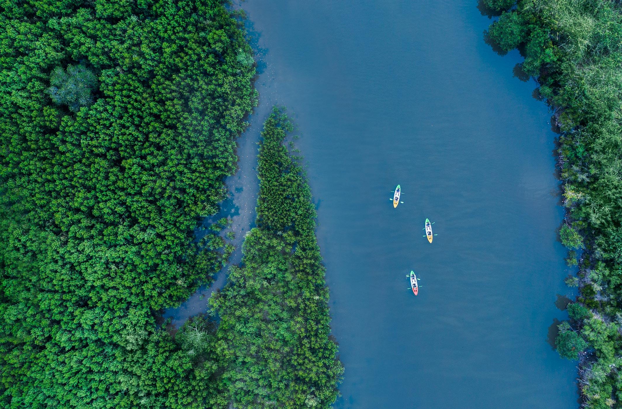 str3482ls-217771-Kayak-Tour-High